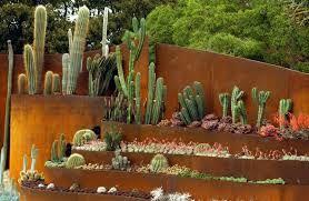 Trochu kaktusov .
