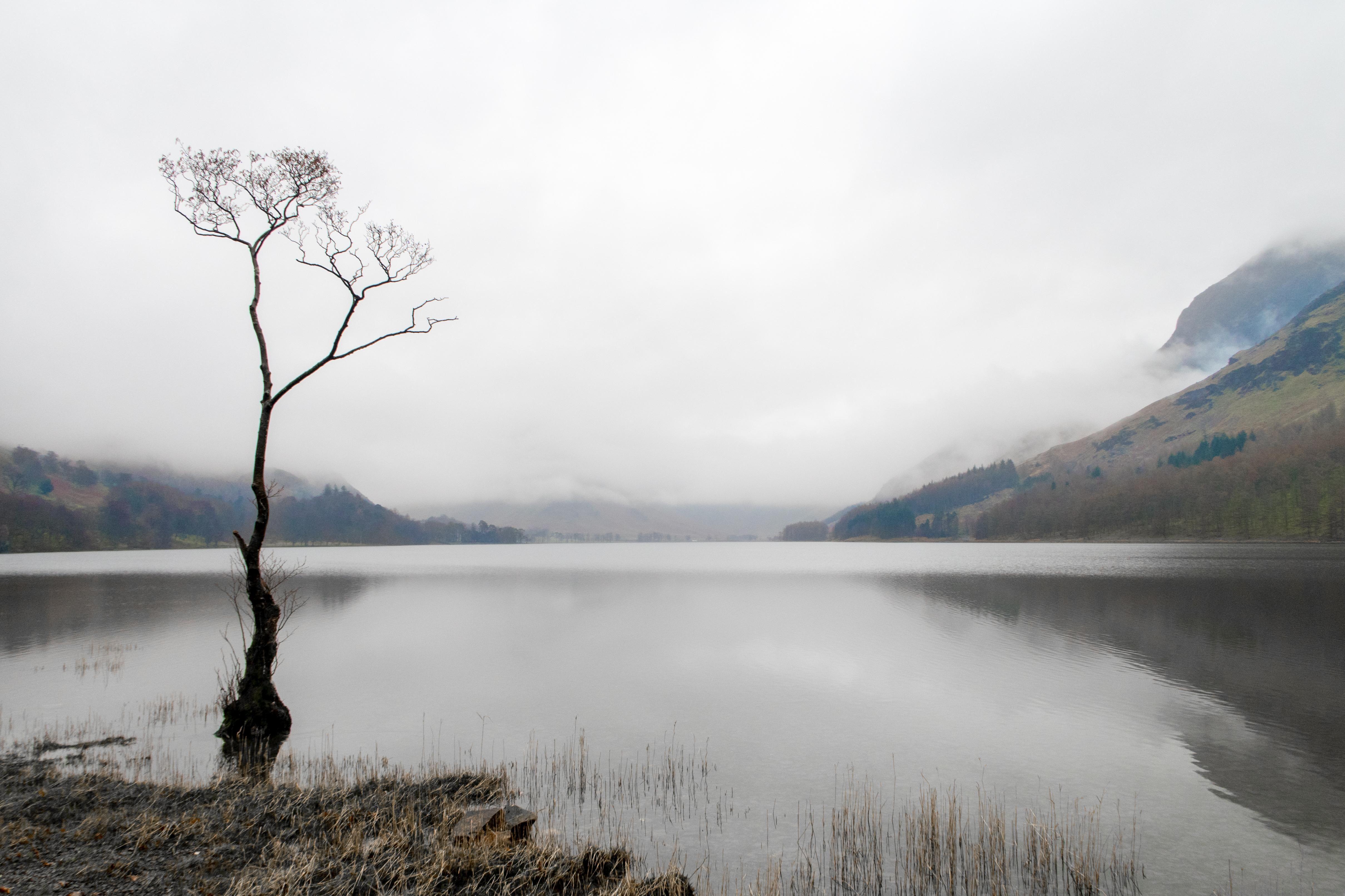 The lone tree lake district oc rollingsloane