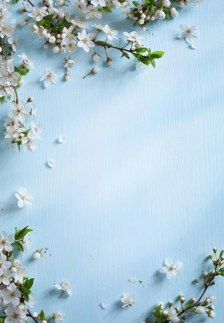 Decoration boards Flower backgrounds, Flower wallpaper