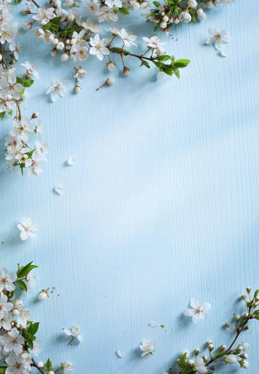 Transparent White Photo Frame with White Flowers White