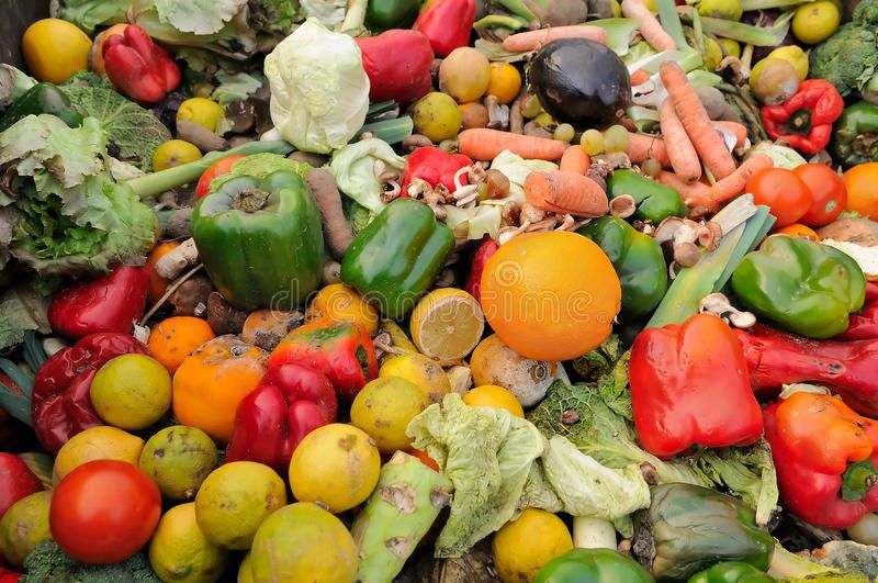 Can You Get Fat From Fruits And Vegetables Food Waste Rotten Fruit And Vegetable Waste In A Dumpster Sponsored Rotten Waste Food Fruit Dumpster Ad Reduce Food Waste Food Waste Food