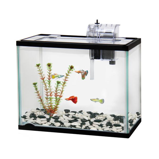 Classica Aquarium Starter Kit Aquarium Fish Tank Starter Kit