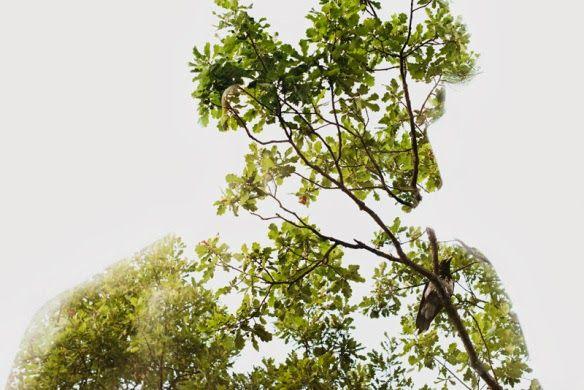 design-dautore.com: We Are Nature, le foto di Christoffer Relander