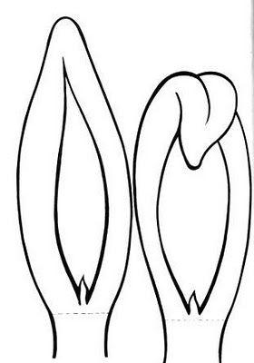 Moldes Para Fazer Orelhas De Coelho Orelhas De Coelho Mascara