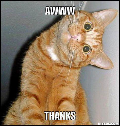 93b86e3b92dc036c990116feac27c01f thanks meme thank you cat meme generator awww thanks 9070cc jpg