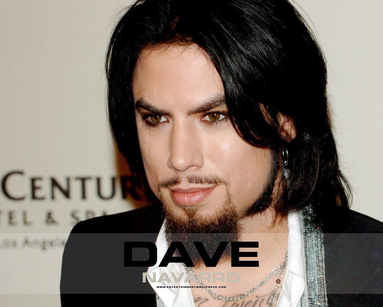 Dave Navarro A famous Rock Star is appearing as a guest