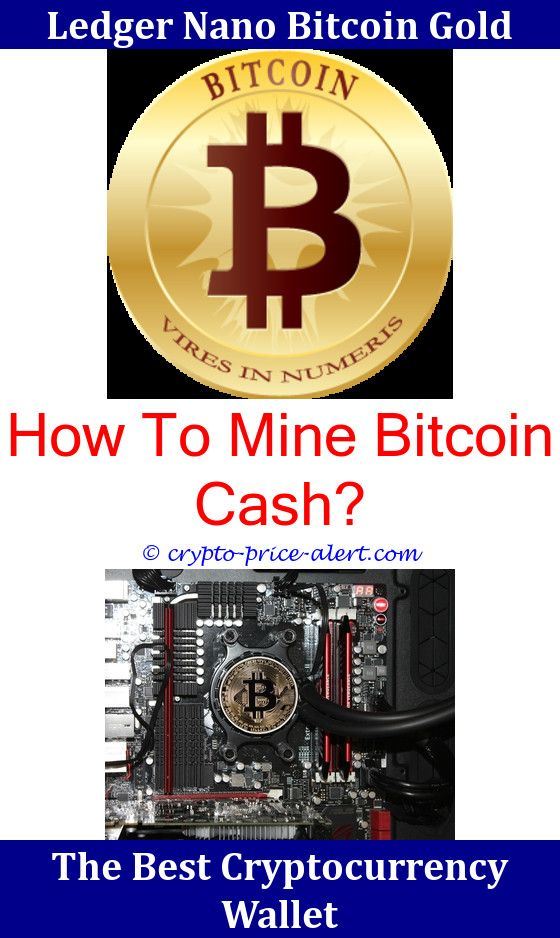 How To Mine Regal Coin Pools How To Mine Spots Cryptocurrency
