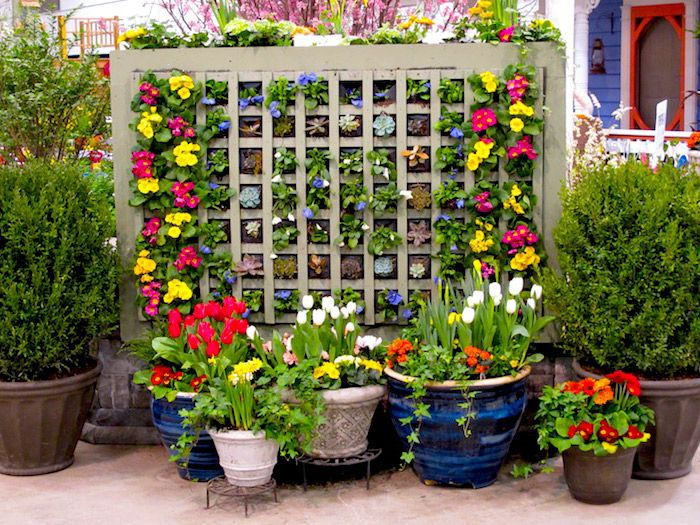 Awesome Sunny Flower Vertical Garden Designs