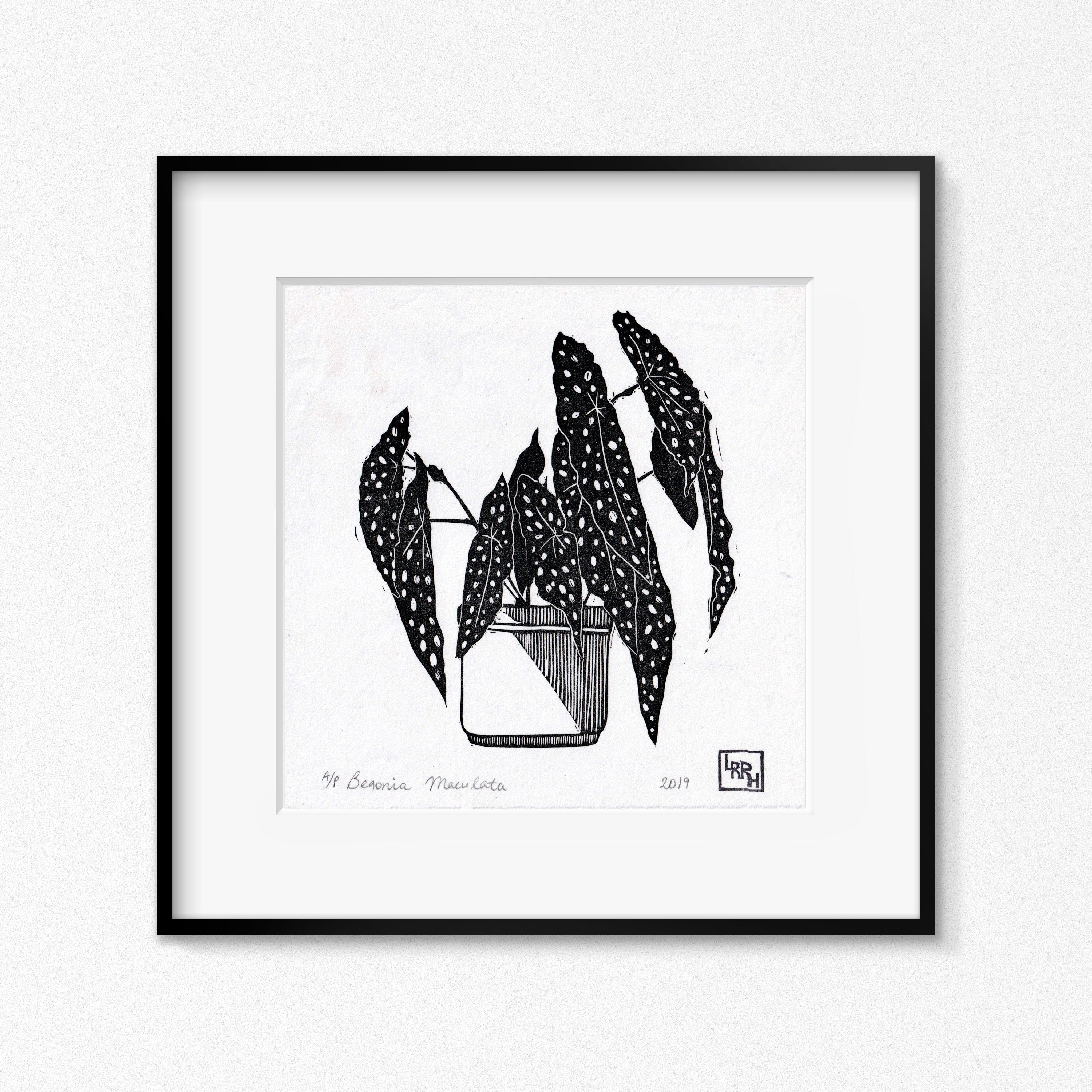 Interiors Houseplants Limited Edition Lino Print of a  Potted Succulent