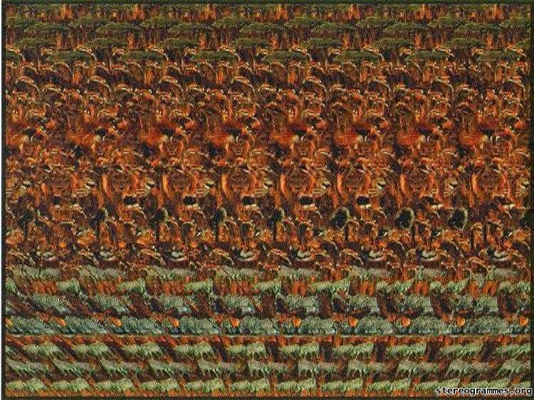 Does Anybody Else Remember This I Loved Magic Eye 3d Picture Books When I Was Younger Eye Illusions Magic Eyes Magic Eye Pictures