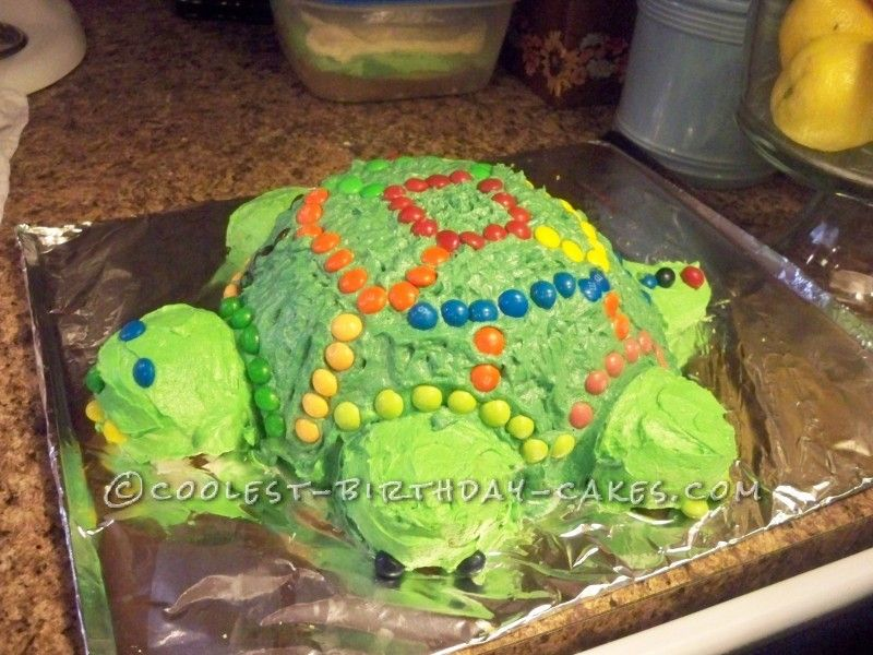 Cute Homemade Turtle Birthday Cake Turtle birthday Birthday cakes