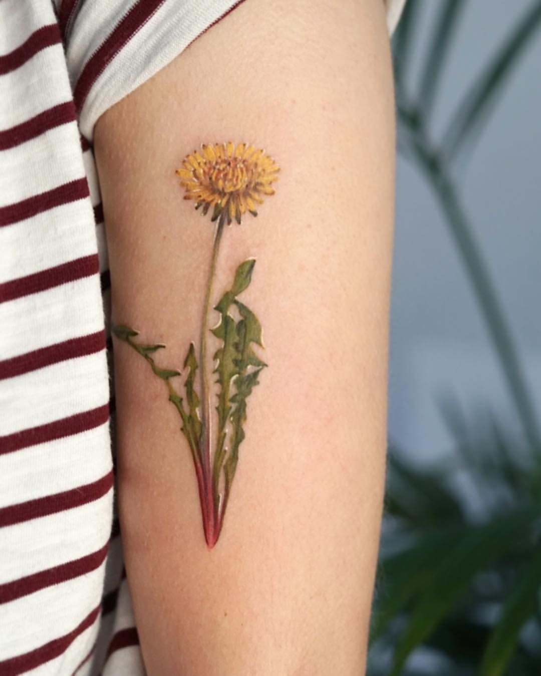 The Dandelion Flower A Gift To A Loved One That Will Provide You Happiness And A Promise Of Total Faithfulness Tha Dandelion Tattoo Tattoos Dandelion Flower
