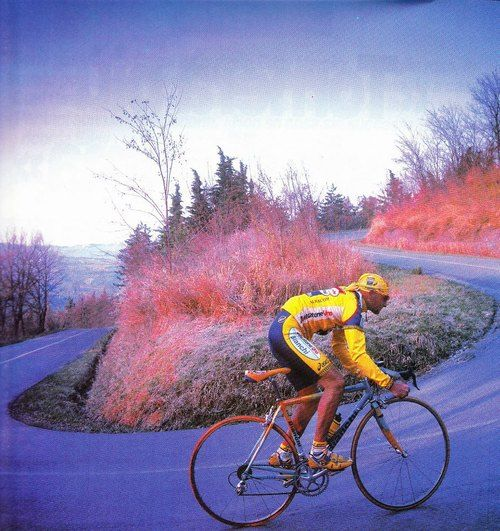 Pantani Doing What He Did Best Going Uphill Cycling Art Road