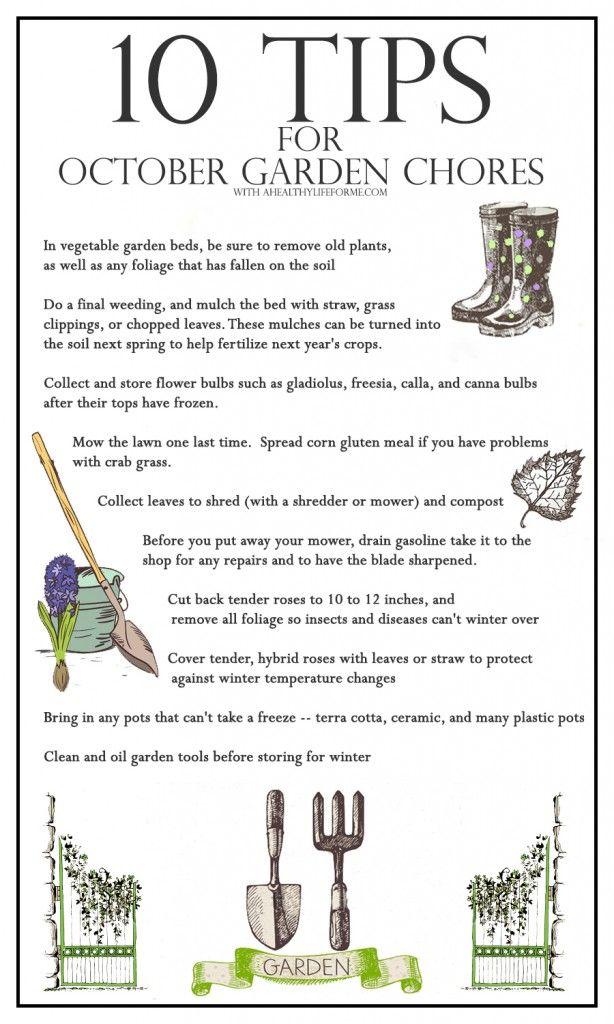 10 Tips for October Gardening is part of garden Tips For Fall - 10 tips for october gardening for the organic gardener