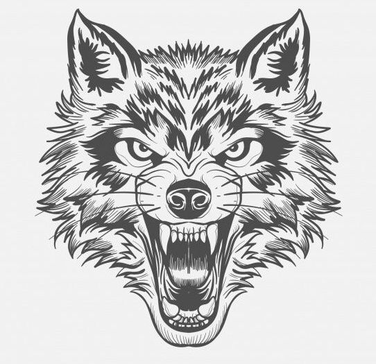 Pin By Lane Staley On Wolf Wolf Face Tattoo Wolf Face - Tattoovorlagen Wolf