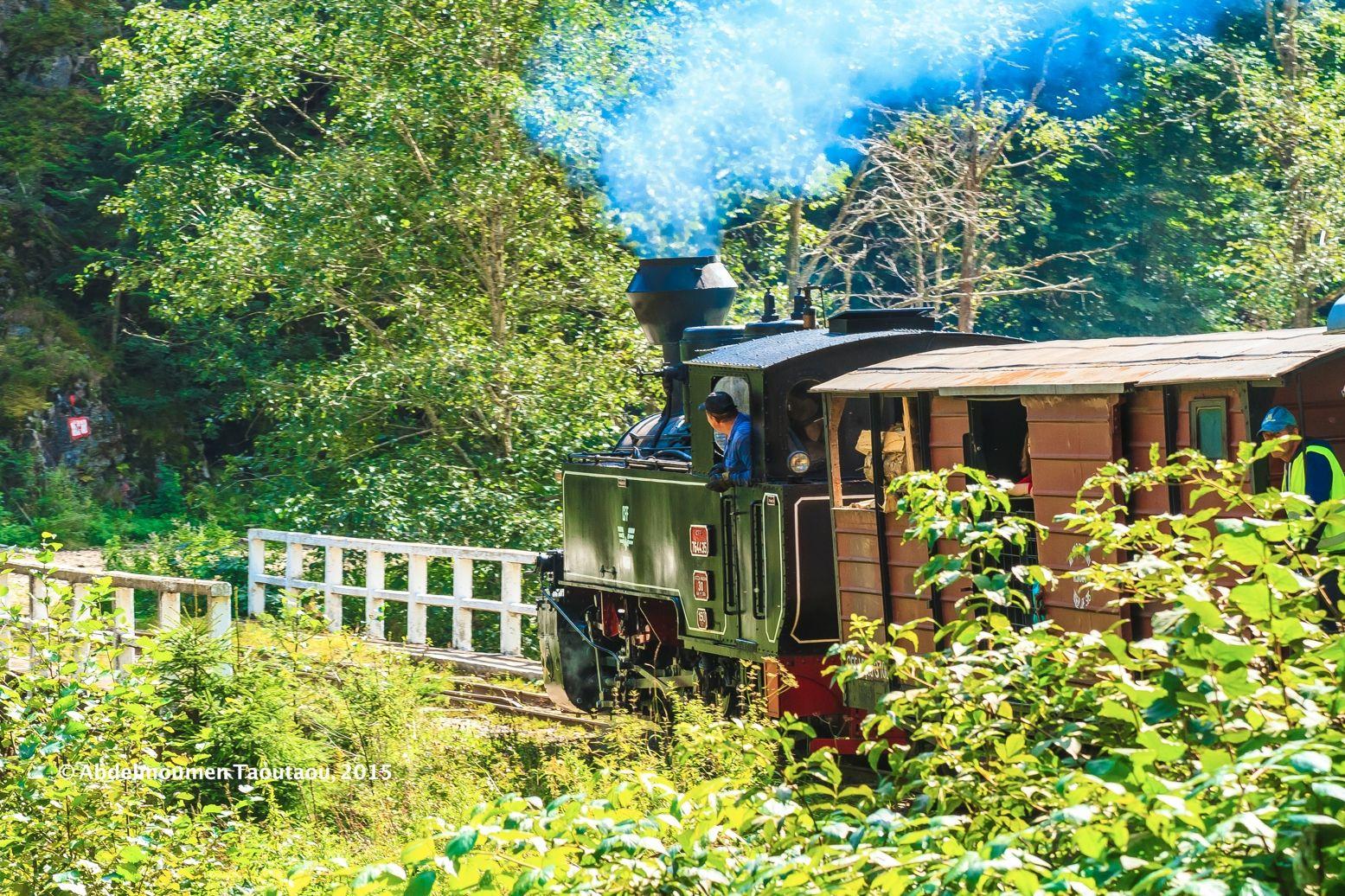 The mocanita train, in Maramures, Romania!