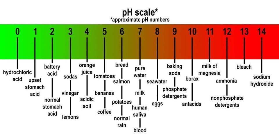 Ph Scale  Medical Stuff    Ph Chemistry And Chemistry