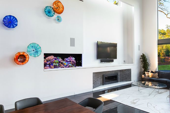 27 Cool Aquariums for Your Home | Aquariums, House and Room