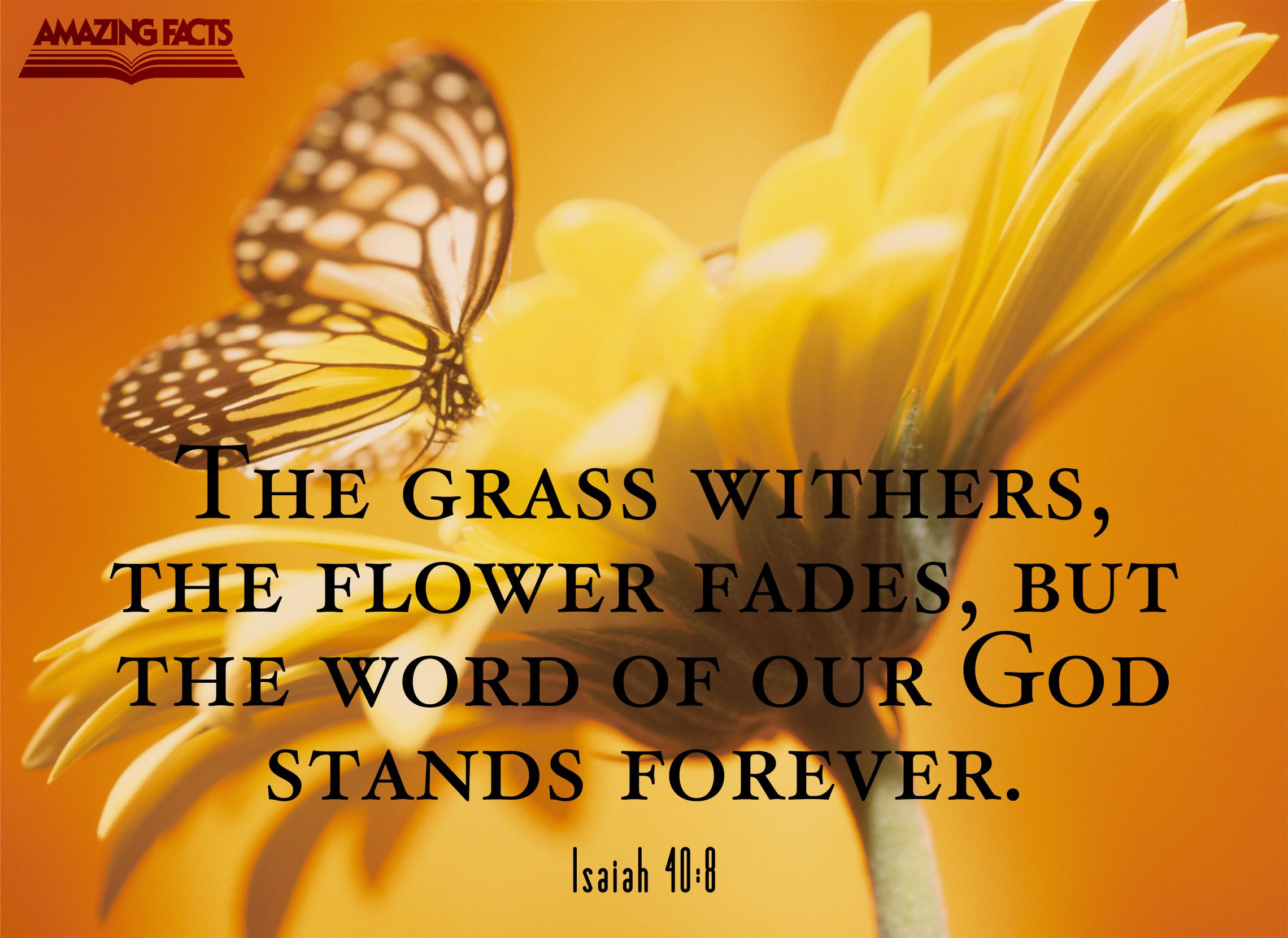 Pin by Amazing Facts on Scripture Pictures Scripture