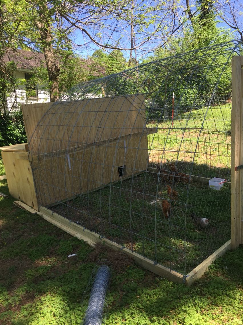 My coop for the chickens since we live in town can't let ...