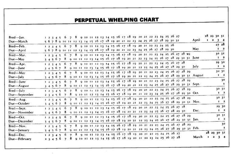 Pin On Whelping Chart