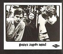 Gorky's Zygotic Mynci - 7/3/04 De Montford Hall