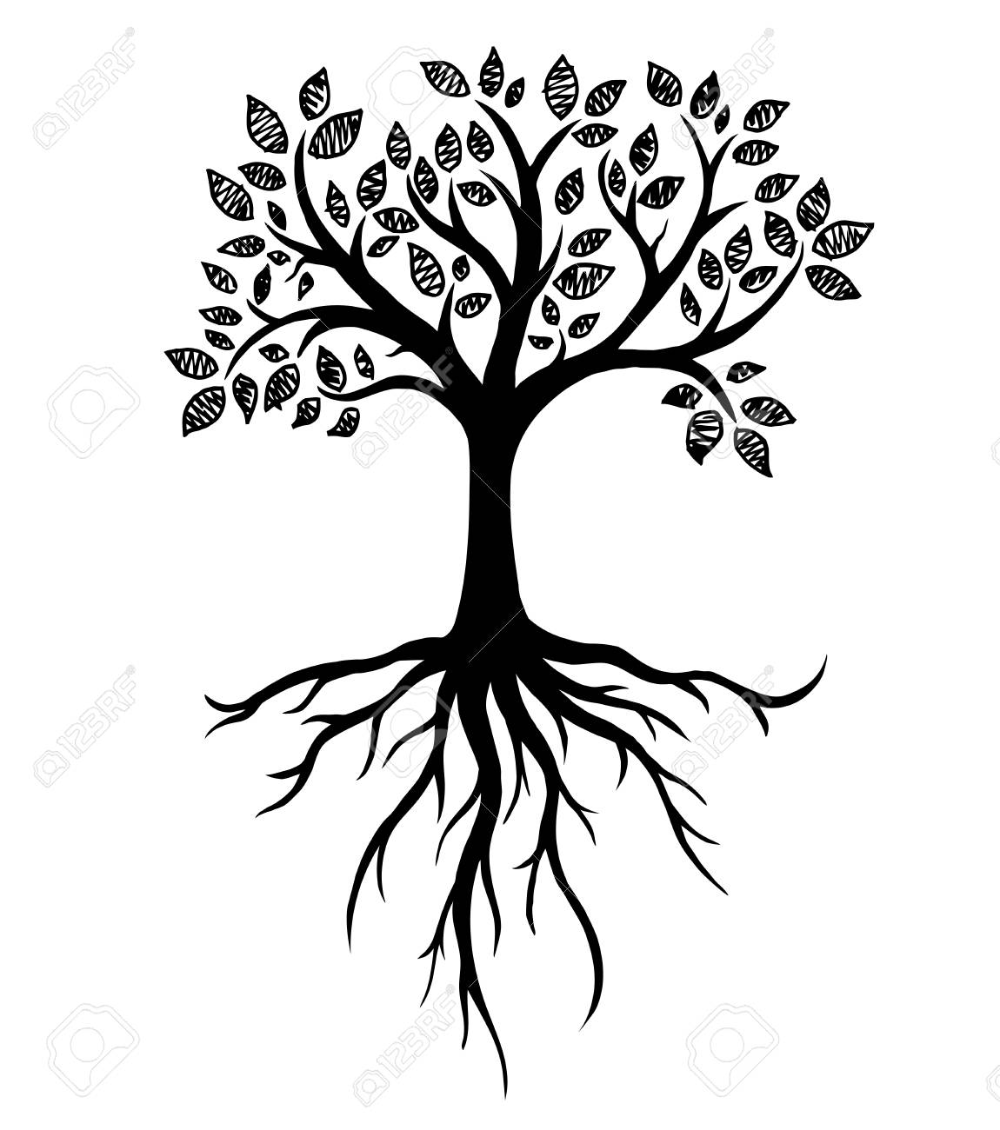Tree Silhouette With Roots Real Hand Drawing Vector Illustration Trees Art Drawing Tree Silhouette Tree Drawing