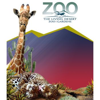93bfa273b773ccd397e856463141c77d - Wildlights The Living Desert Zoo And Gardens December 31