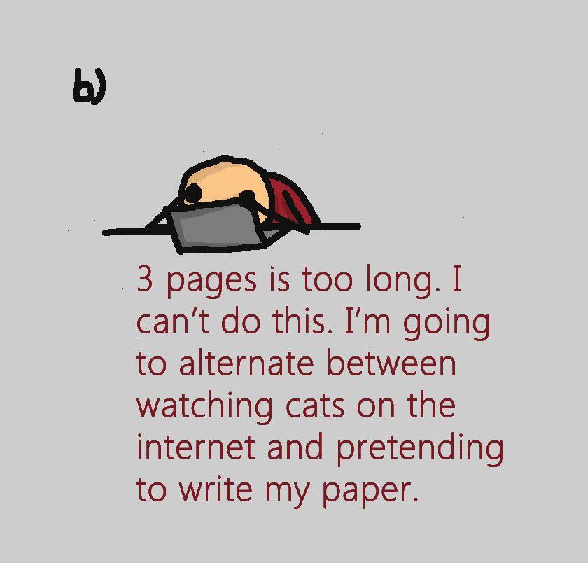 essay on writing process