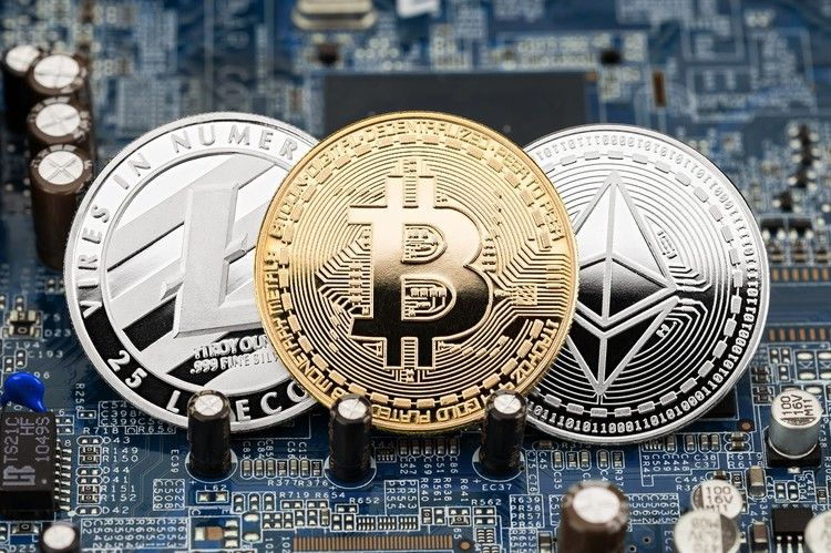 bitcoin fx norma