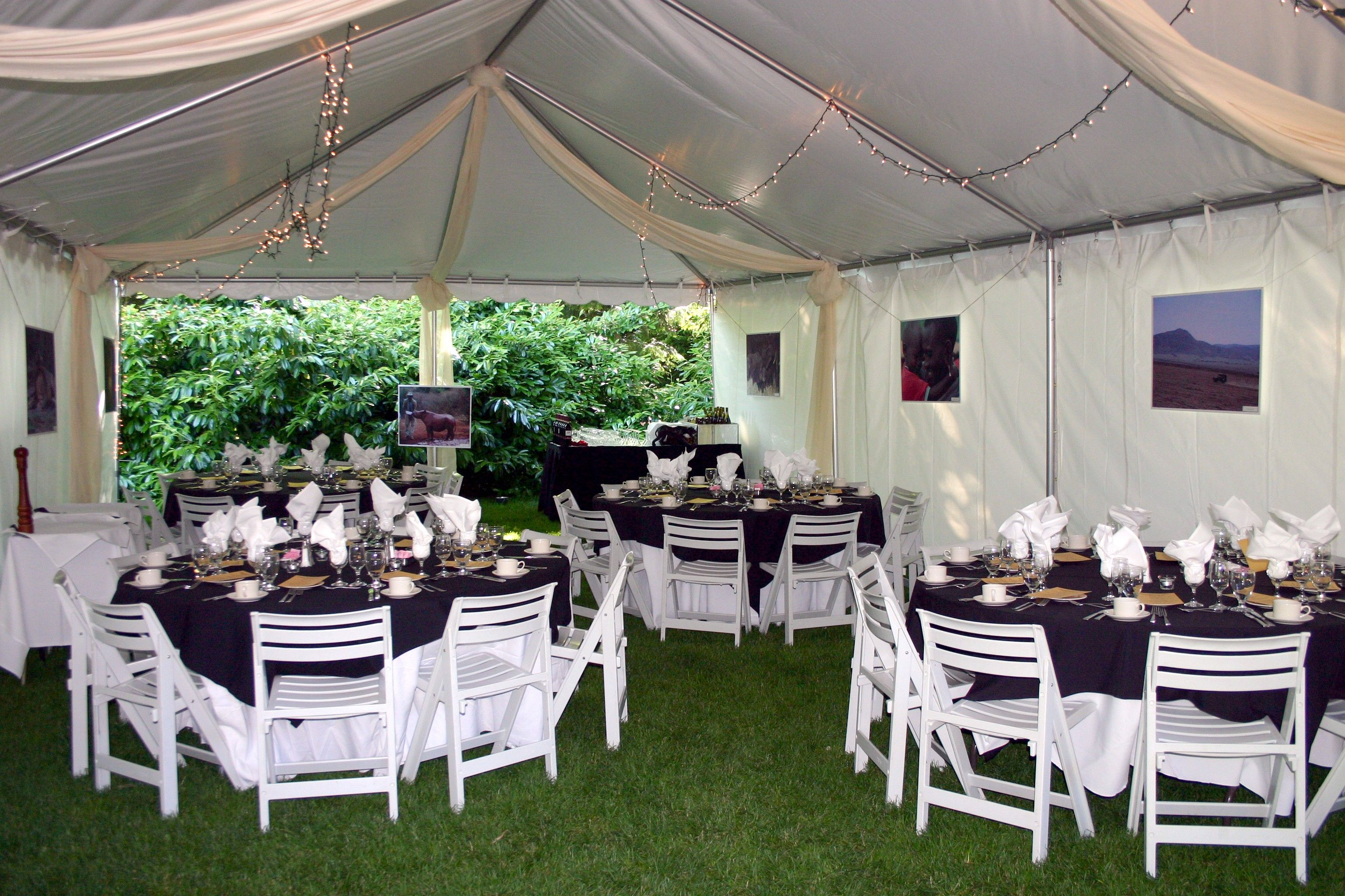 """Say """"I do"""" under the huge old-growth beech trees on the lawn of Beech Grove. This naturally secluded space is perfect for  your outdoor ceremony or reception!   www.zoo.org/planyourevent"""