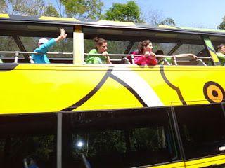 Parque Nacional do Iguaçu #viajarcorrendo #parquenacional #pni #parquenacionaldoiguacu #iguacu #foz #fozdoiguacu #cataratas