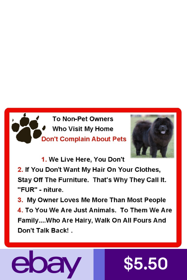 CHOW CHOW Non Pet Owner Magnet