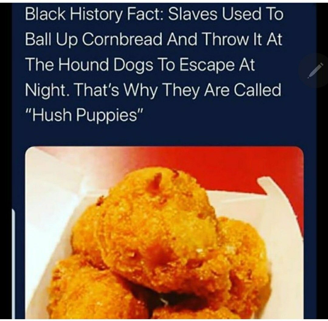 Pin on BLACK HISTORY 365 NOT 28..