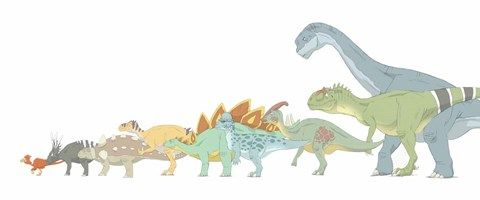 Framed Various Dinosaurs and their Comparative Sizes Print