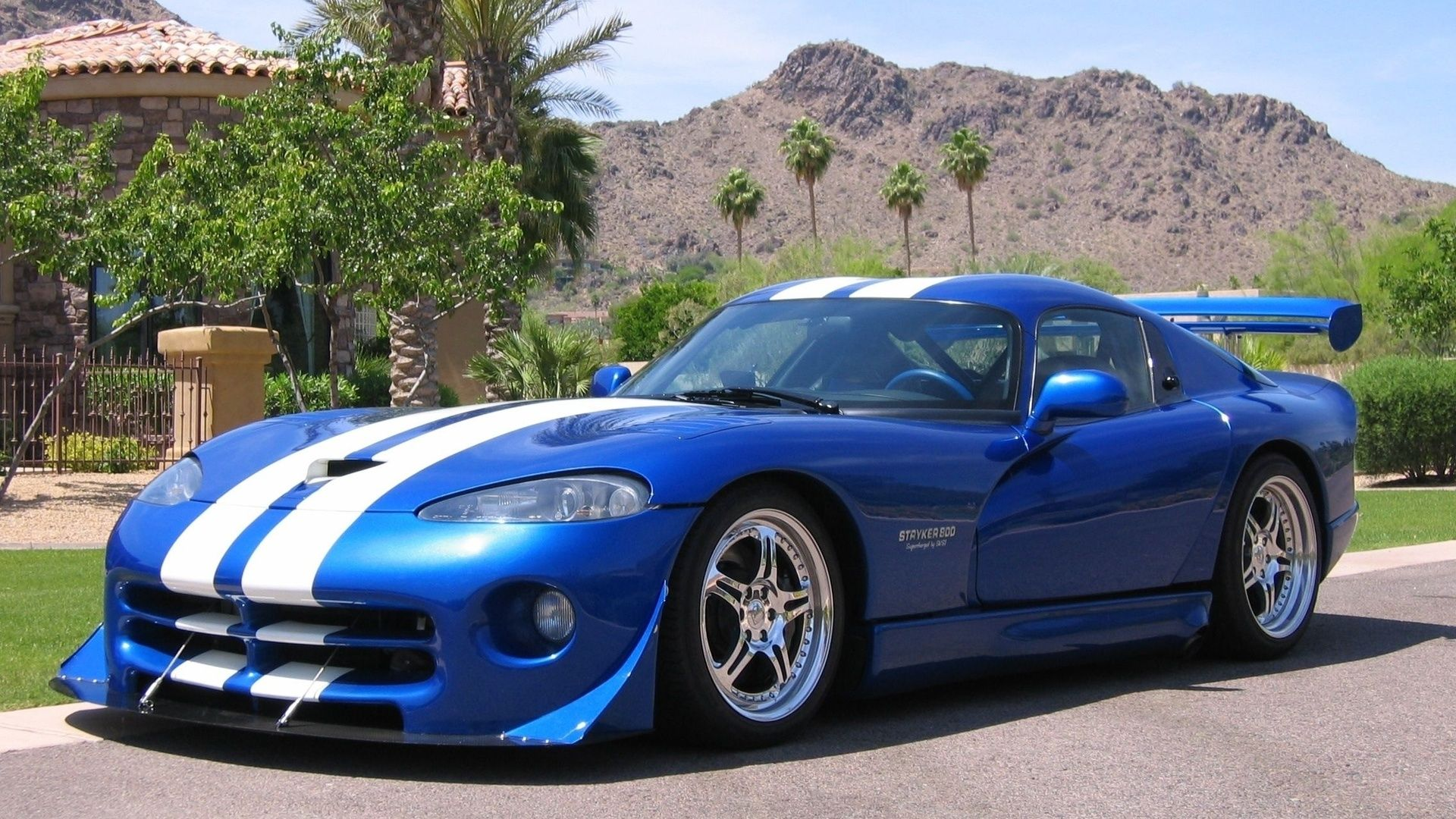 VIPER BABES | Wallpaper Dodge Viper Gts, Tuning, Car, Cars, Dodge,