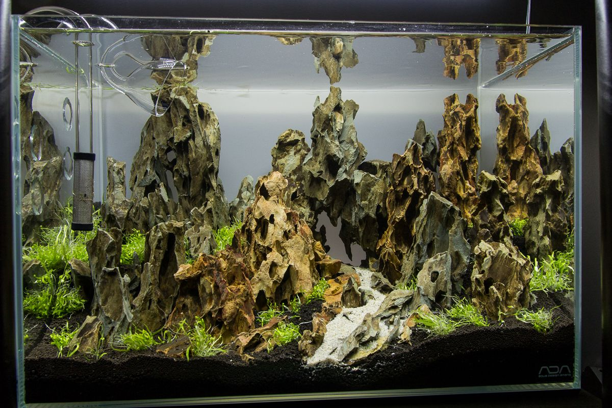 Aquascape No 3 Ada 45p The Planted Tank Forum Aquascaping