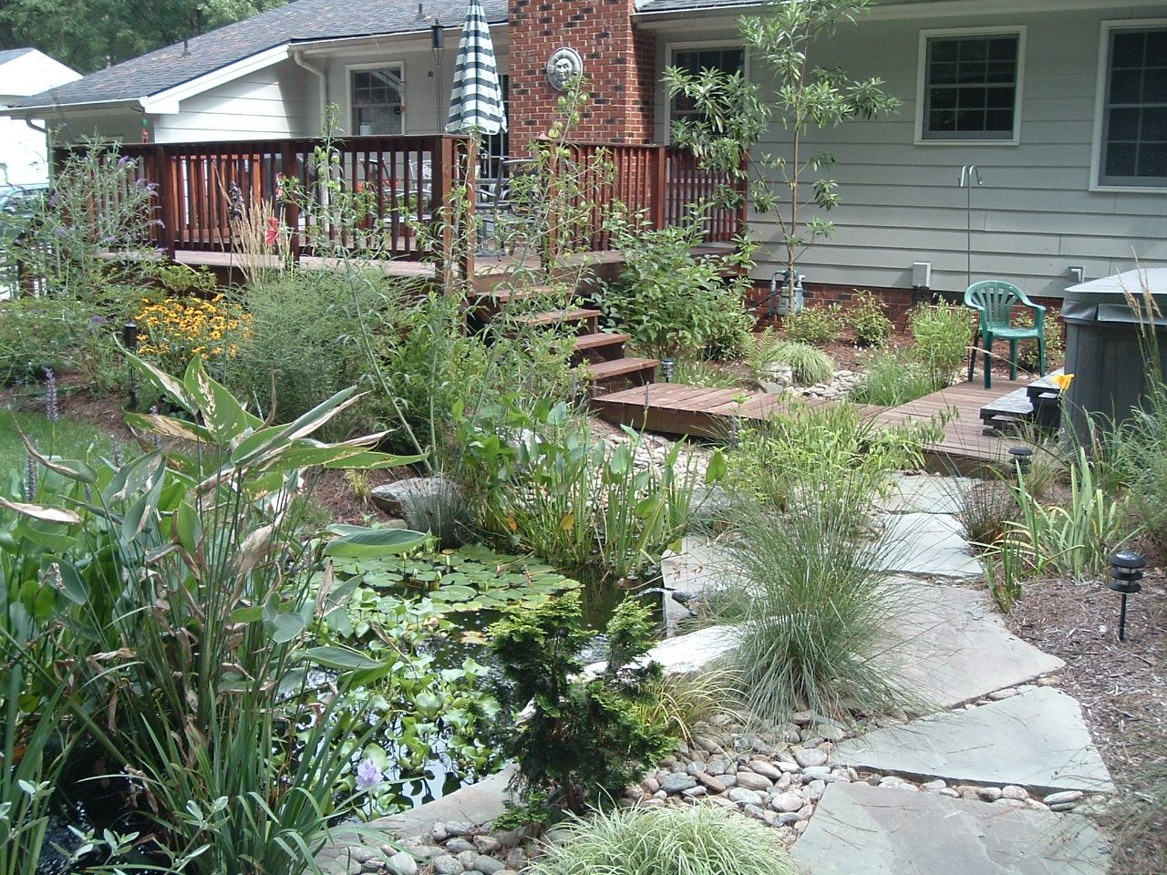 Rain garden with a pond in durham nc water collection for Rain garden design