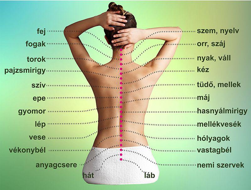A vastagbélrák és a végbélrák tünetei - mire figyeljünk? Vastagbélrák és hátfájás