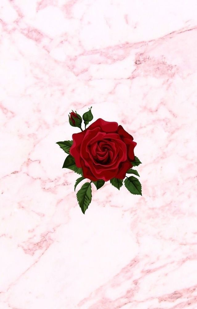 Red Rose / Pink Marble | Wallpapers in 2019 | Wall ...
