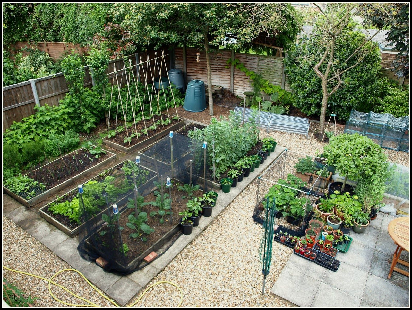 как спланировать огород на даче с фото образом сами съедобный