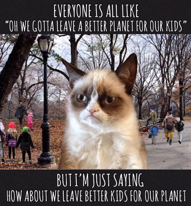 Sick Kid Cat Meme