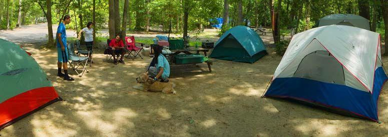 Seashore Campsites Campground Cape May Camping