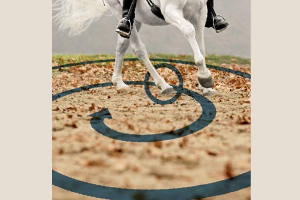 15 Übungen gegen 6 Galopp-Probleme #horsepattern