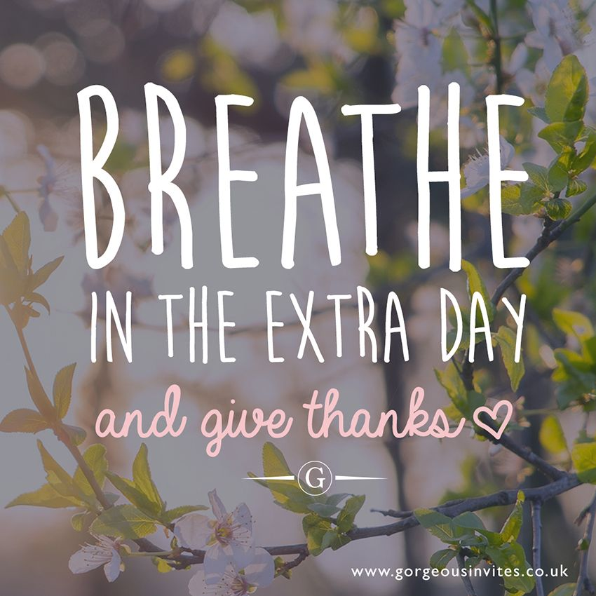 Happy Holidays Inspiration: Bank Holiday Quote, Spiritual, Gratitude, Give Thanks