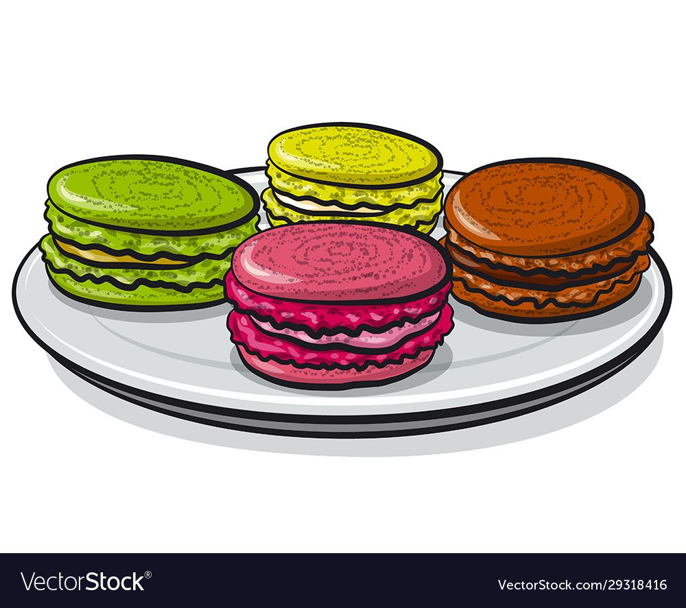 Colorful macarons vector image on VectorStock in 2020