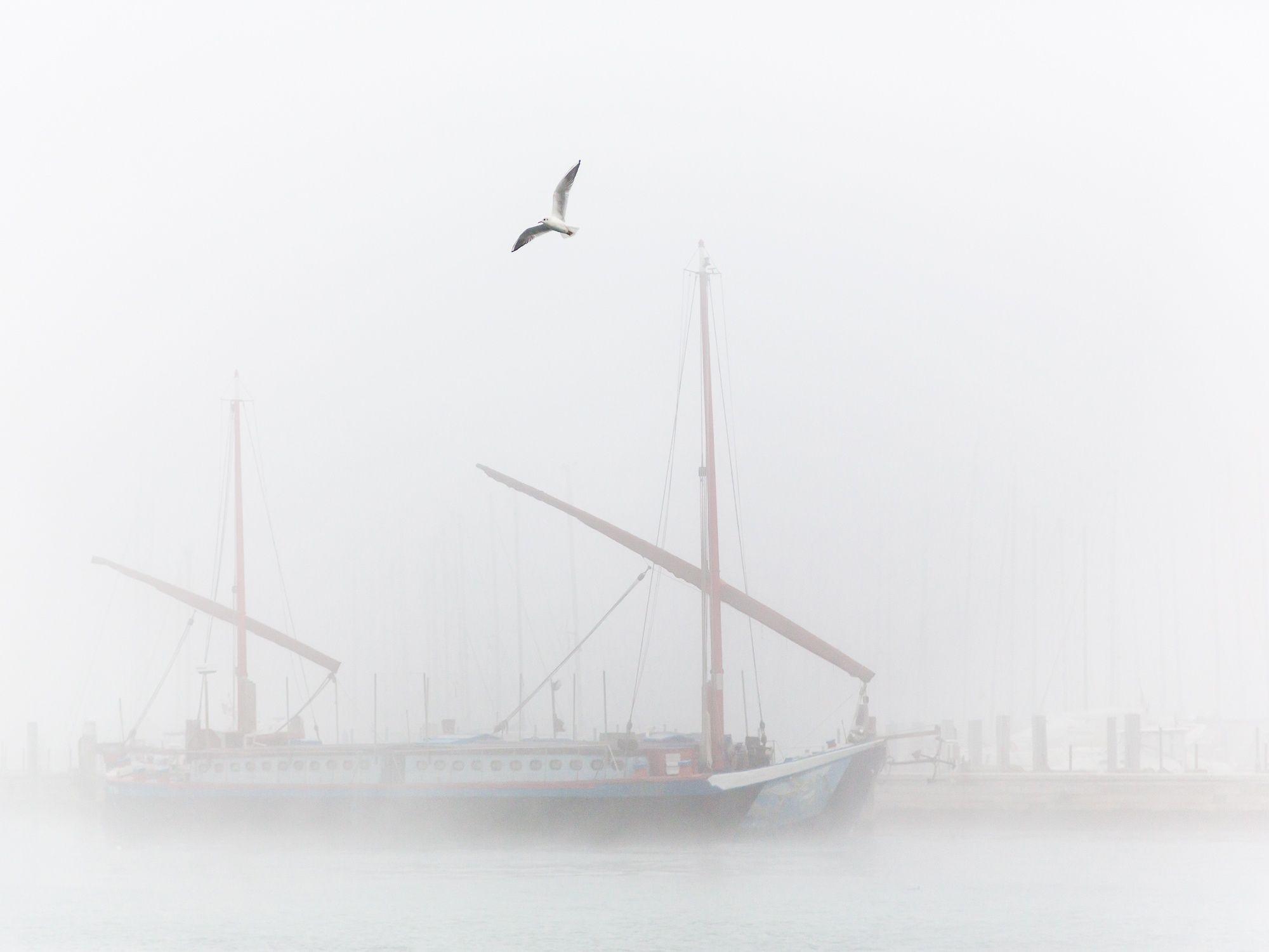 Urban Exploration: A bit of fog by lucagiuliani https://t.co/dWdLTu9QG8 | #500px #photography #photos https://t.co/3iBa3MaoMC #followme #photography