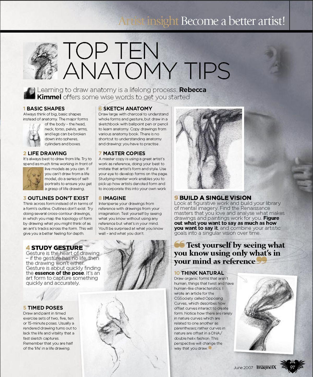 Learn Anatomy Fast Gallery - human body anatomy