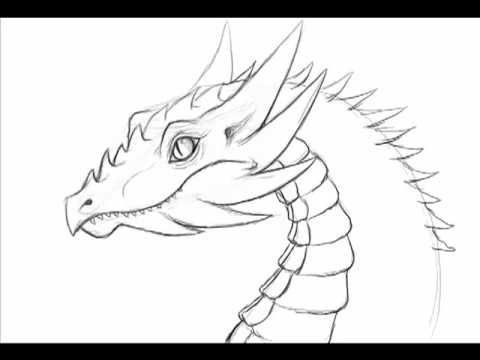 Simple to draw dragon google search dragons pinterest how to draw a dragon totally going to be drawing my first dragon when my wacom bamboo create comes in ccuart Choice Image