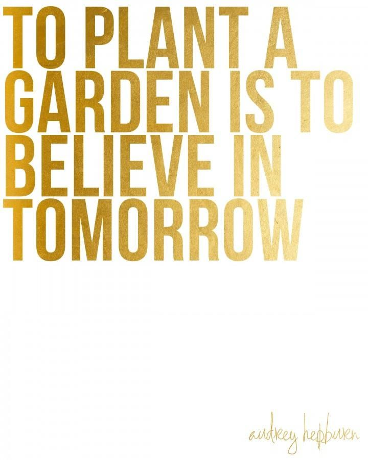 To Plant A Garden Is To Believe In Tomorrow Audrey Hepburn G A R D E N Pinterest Audrey